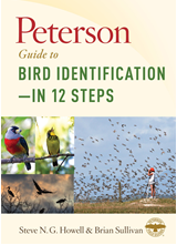 Peterson Guide to Bird Identification - In 12 Steps By Steve NG Howell and Brian L Sullivan