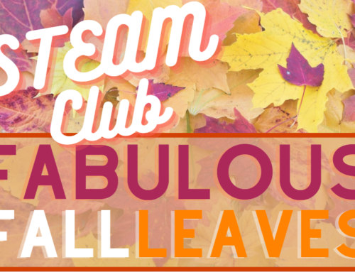 STEAM Club: Fabulous Fall Foliage!