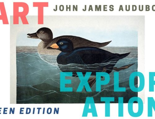 Art Exploration Teen Edition: John James Audubon