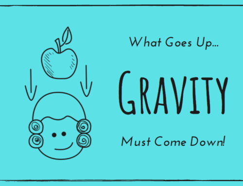 Gravity: What Goes Up Must Come Down