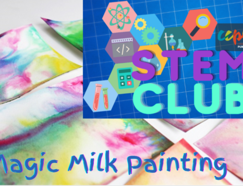STEM Club: Magic Milk Painting