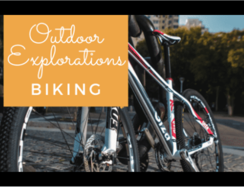 CCPL Staff Picks: National Bike Month