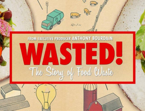 Documentaries for Teens: Wasted