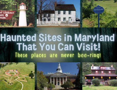 These places are never boo-ring!